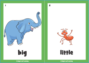 Big, Big, Big Song Flashcards
