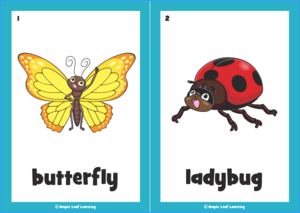 Butterfly Song Flashcards