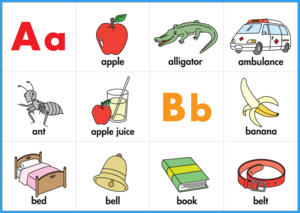 Phonics Ring Cards (Color)
