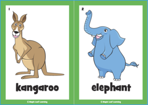 picture regarding Zoo Animal Flash Cards Free Printable referred to as Flashcards via Subject Maple Leaf Studying Library