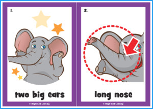 The Elephant Dance Song Flashcards