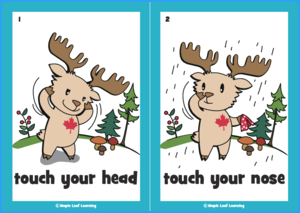 Touch Your Head Song Flashcards