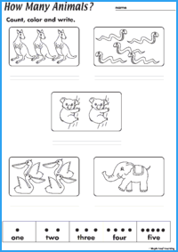 How Many Animals? Worksheet