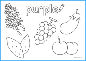 Purple Coloring Worksheet