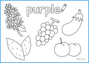 Purple Coloring Worksheet