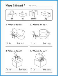 Where Is the Ant? Worksheet